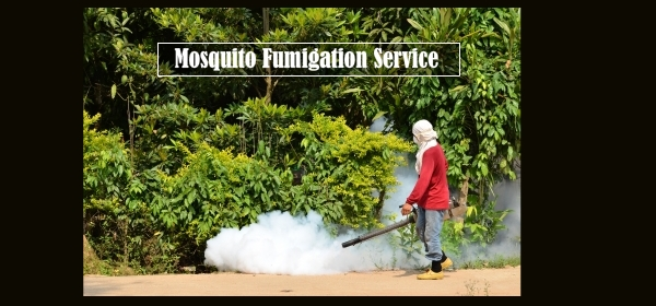 mosquito control Trichy